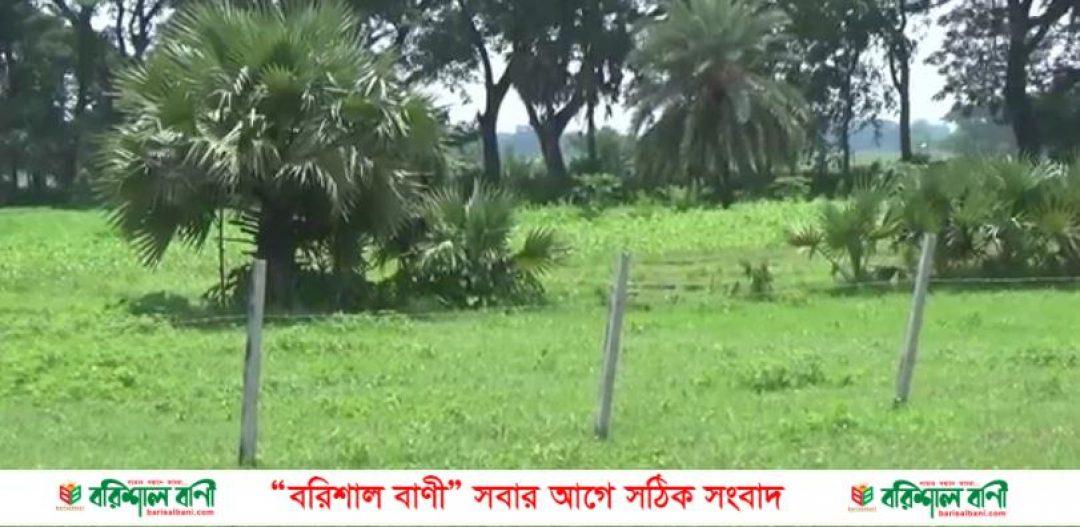 Madaripur Land dakhol news
